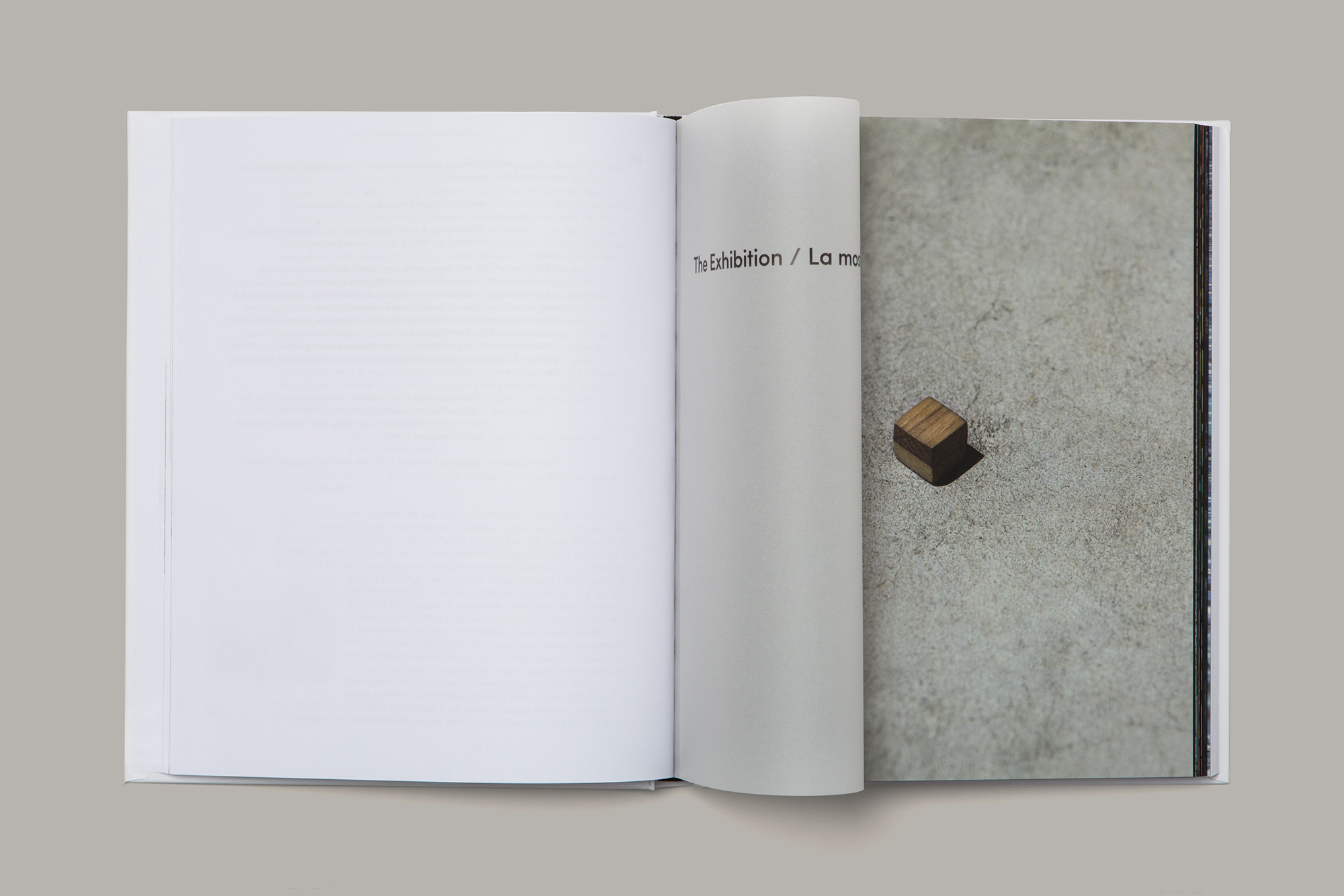 Giulia Dolci - Cildo Meireles Catalogue