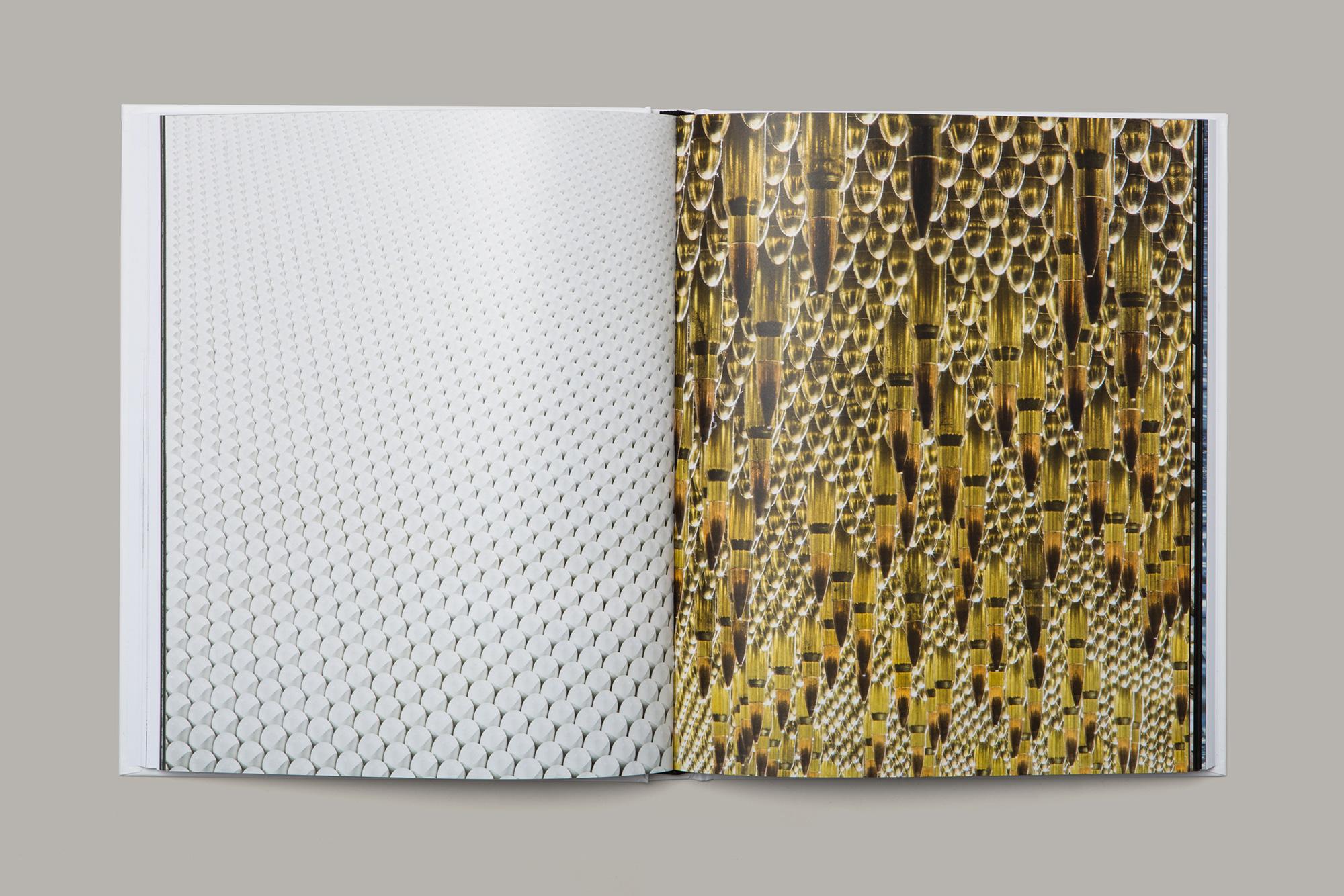 Giulia Dolci - Cildo Meireles Catalogue