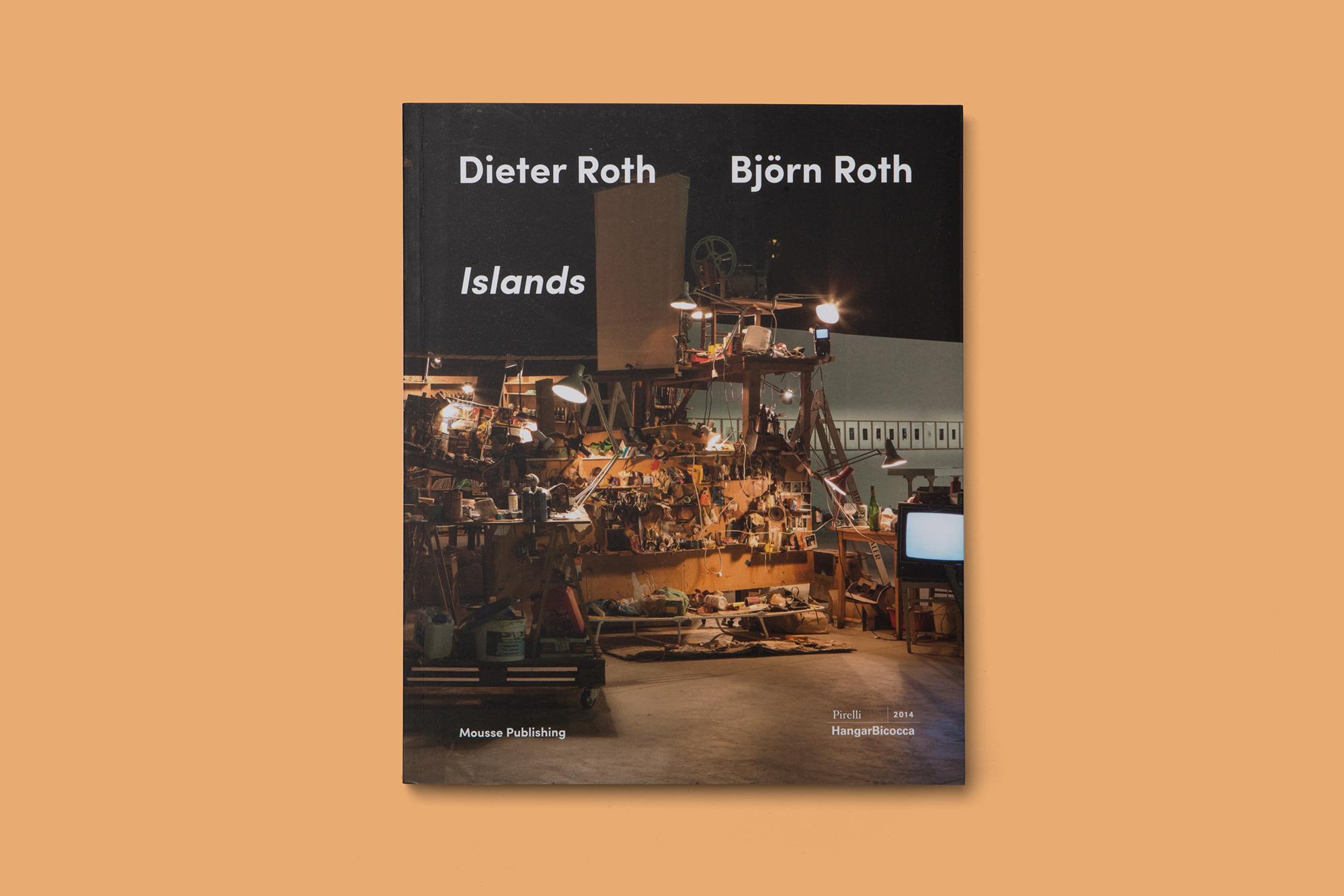 Giulia Dolci - Dieter Roth Catalogue — Cover